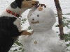 deyla-a-snehulak