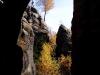 podzim-11.jpg