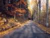 podzim-11