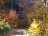 podzim-2
