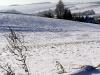 zimni-13.jpg