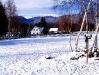 zimni-2.jpg