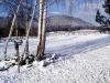 zimni-22.jpg